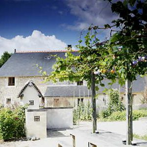 Loire valley garden Tours with accommodation at Moulin De Maulne