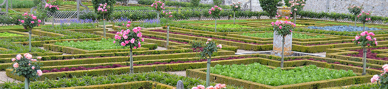 Garden Tours of the Loire Valley